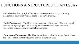 paragraph essay 5 6