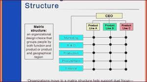 Organizational Chart Designs Matrix Organizational Chart Template Infiscale Designs