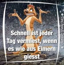 Coole Weise Zitate