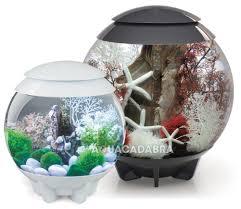 Fish Tank Oase Biorb Halo 15l 30l 60l Led Light Fish Tank Aquarium Tropical