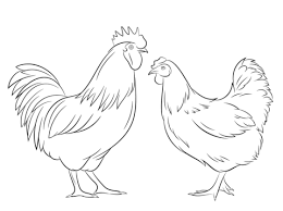 Small Picture Rooster and Hen Coloring page Coloring Pages Pinterest Hens