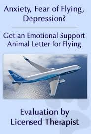 How To Get A Doctors Note For An Emotional Support Dog Emotional Support Animal Center Faq