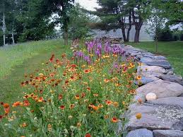 Small Picture Wildflower Garden Design Home Design