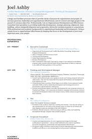 Executive Format Resume Amazing Executive Consultant Resume Samples VisualCV Resume Samples Database