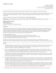 Business Analyst Resume Resume Sample Web