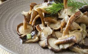 Resultado de imagem para imagens sobre cogumelos