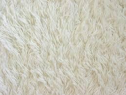 White carpet texture stock photo Image of texture woolen 534036