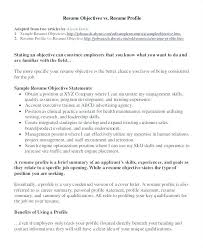 Sales Resume Objective Statement Examples Sample Professional Resume