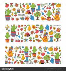 cute vector garden with birds cactus plants fruits berries gardening tools rubberboots garden market pattern in doodle style hand drawn image vector