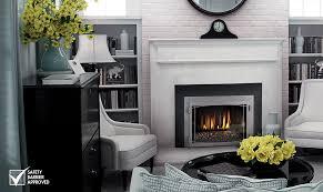 napoleon fireplace inserts