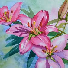 pink lily flower painting original watercolor by artist pj cook new original nr realism