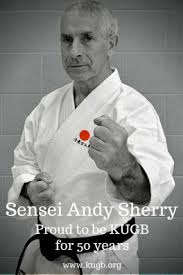 Image result for Sensei Andy Sherry