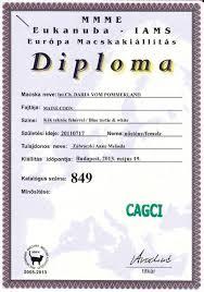 eng diploma 19 05 2013