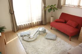 Shaggy Rugs For Living Room How To Clean A High Pile Shag Rug Porch Advice