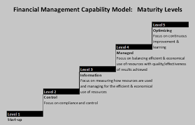 What Is A Financial Management Capability Model