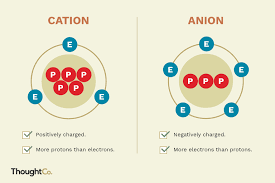 Anion Charge Chart The Difference Between A Cation And An Anion