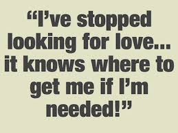 Looking For Love Quotes Fascinating Searching For Love Quotes Love Quotes
