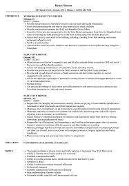 Cv For Driver Job Executive Driver Resume Samples Velvet Jobs