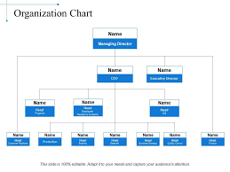 Organization Chart Example Of Ppt Powerpoint Presentation