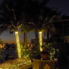palm tree outdoor lights photo 3