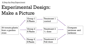 How To Make An Experimental Design Observational Studies And Experiments Ppt Video Online