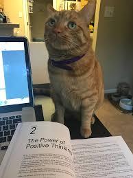 essay great writing capgemini topics 2017