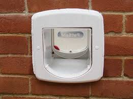 cat flap in wall installing a microchip pet door