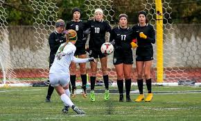 Roseville girls head to Class 2A, Section 5 final after topping Mounds View  in penalty kicks