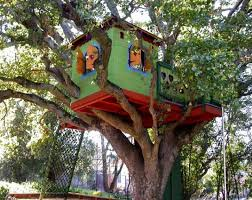 Treehouse Rentals  Treehouse VineyardsTreehouse Pic