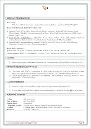 Resume Skills Summary Examples Ceciliaekici Com