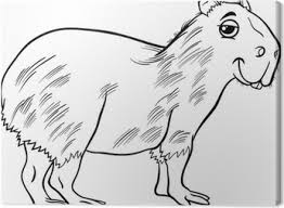 Capybara Dier Cartoon Kleurplaat
