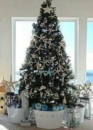 a coastal starfish tree