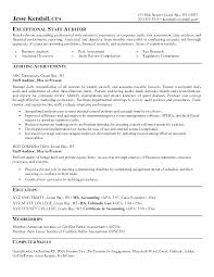 Auditor Resume Adorable Resume Editor Free Awesome Collection Of Internal Auditor Resume