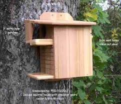 squirrel house plans squirrel house plans cedar squirrel house squirrel house design plans fox squirrel house