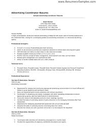 sample resume advertising coordinator resume sle - Advertising Coordinator  Resume