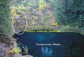 tamolitch blue pool. Beautiful Blue For Tamolitch Blue Pool