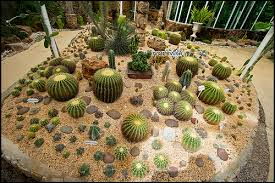 Small Picture Garden Design Garden Design with Good choices for a tabletop