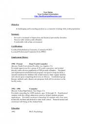 youth counselor resume fascinating resume sample for youth counselor about youth counselor