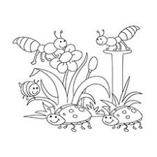 Free Spring Coloring Pages For Kids At Getdrawingscom Free For