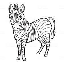 Schattig Zebra Tekenfilm Kleurplaten Pagina Vectorillustratie