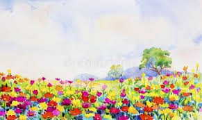 painting watercolor landscape daisy flowers in garden stock ilration ilration of beauty