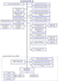 Document Organization Chart Organizational Chart Of Ministry Of Health Structure