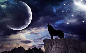 Wolf Moon Live Wallpaper for Android ...
