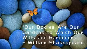 Healthy Body Happy Life - Home | Facebook