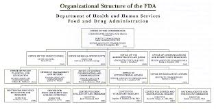 An Overview Of The Drug Approval Process Thebodypro