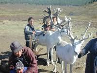 Wildlife Vet, Author, Storyteller: Wildlife Disease Association, book  marketing, Tsaatan, Mongolia