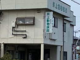 井上 動物 病院