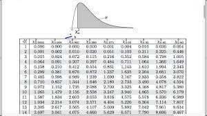 Statistics Chi Squared Table Test Stuff