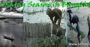composition essay on the rainy season of education
