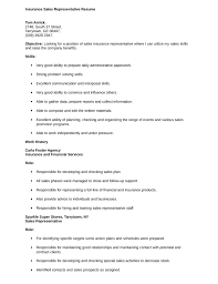 Insurance Representative Resumes Discreetliasons Com Basic Insurance Sales Representative Resume